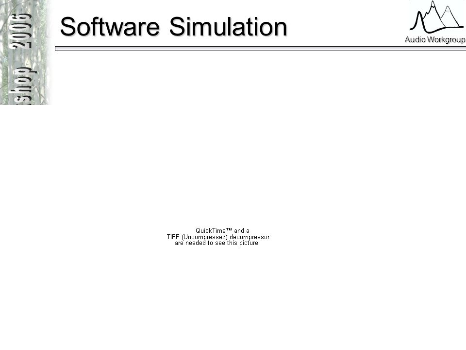 Software Simulation