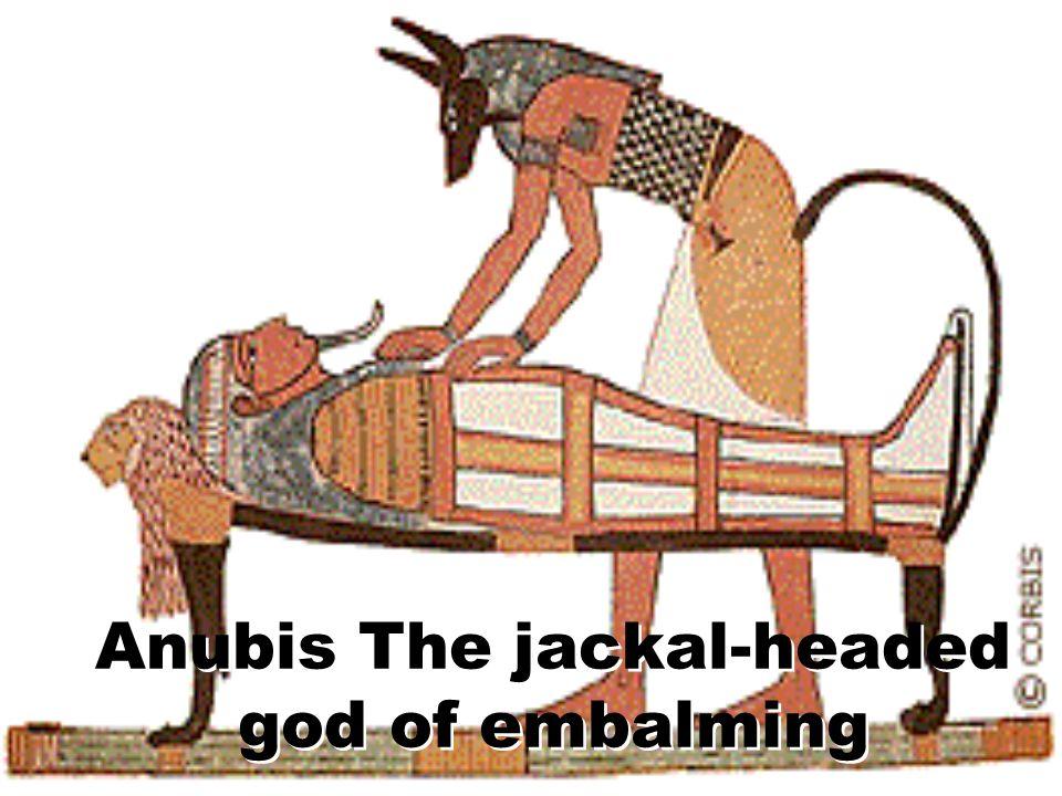 Anubis The jackal-headed god of embalming