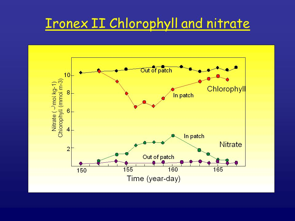 Ironex II Chlorophyll and nitrate