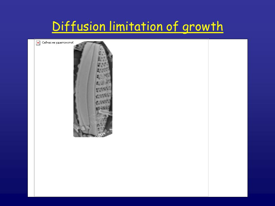 Diffusion limitation of growth