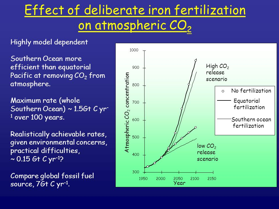 Effect of deliberate iron fertilization on atmospheric CO2