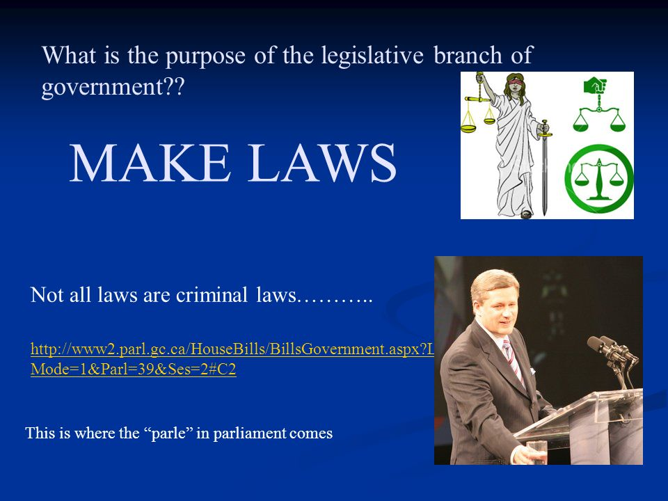 What is the purpose of the legislative branch of government