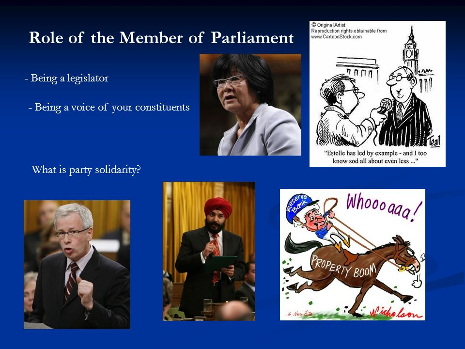 Role of the Member of Parliament