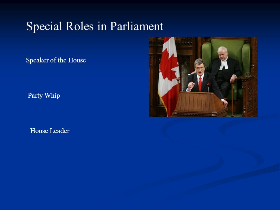 Special Roles in Parliament