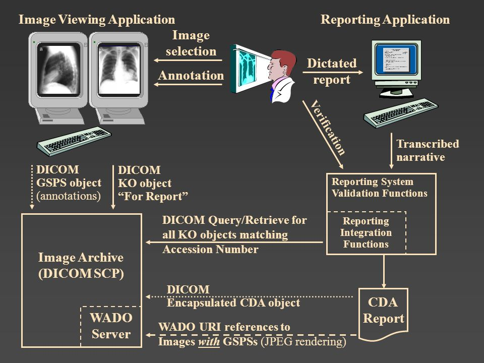 Image Viewing Application Reporting Application Image selection