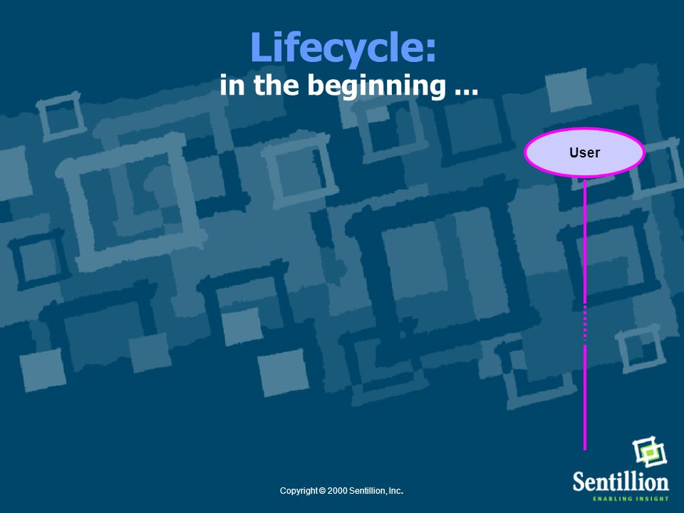 Lifecycle: in the beginning ...