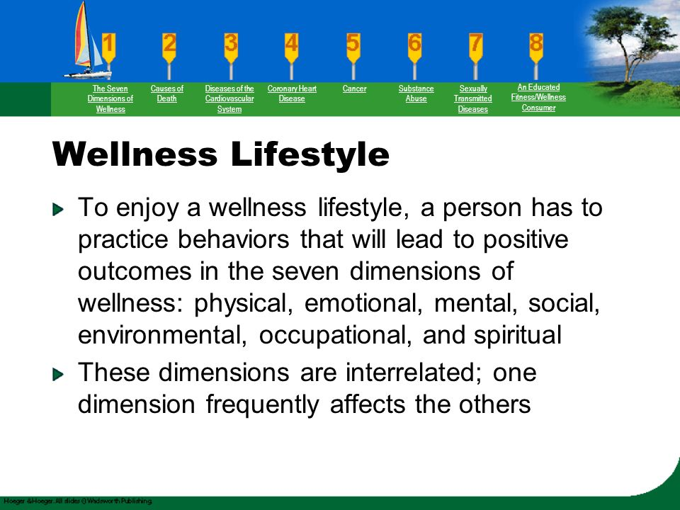 the seven dimensions of wellness We believe in the interaction between mind, body and spirit supported by the 7 dimensions of wellness this holistic belief of mental and physical health.