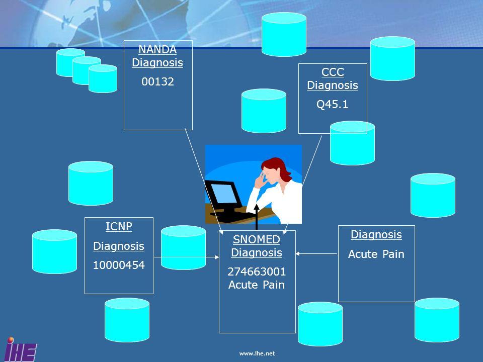NANDA Diagnosis 00132. CCC Diagnosis. Q45.1. ICNP. Diagnosis. 10000454. Diagnosis. Acute Pain.