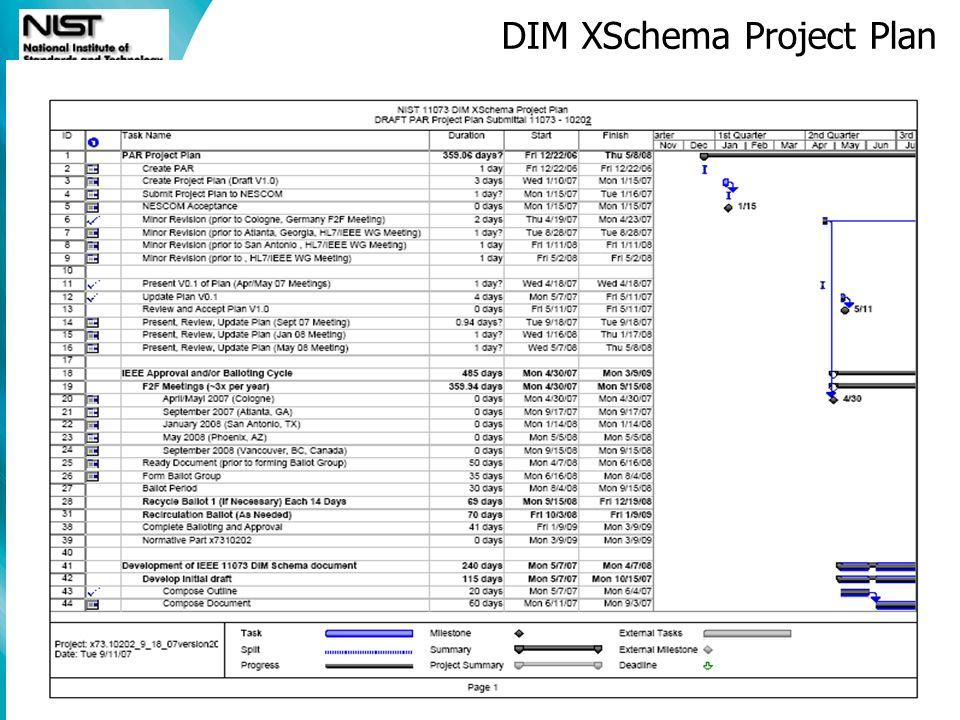 DIM XSchema Project Plan