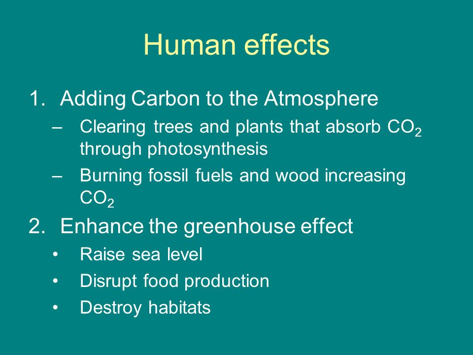 Human effects Adding Carbon to the Atmosphere