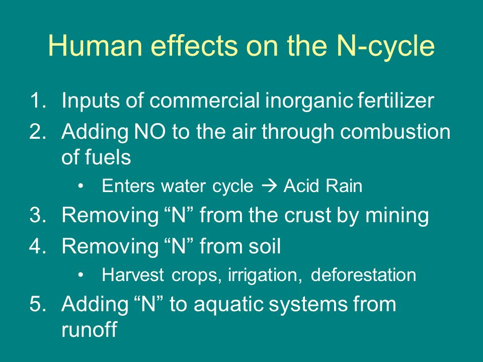 Human effects on the N-cycle
