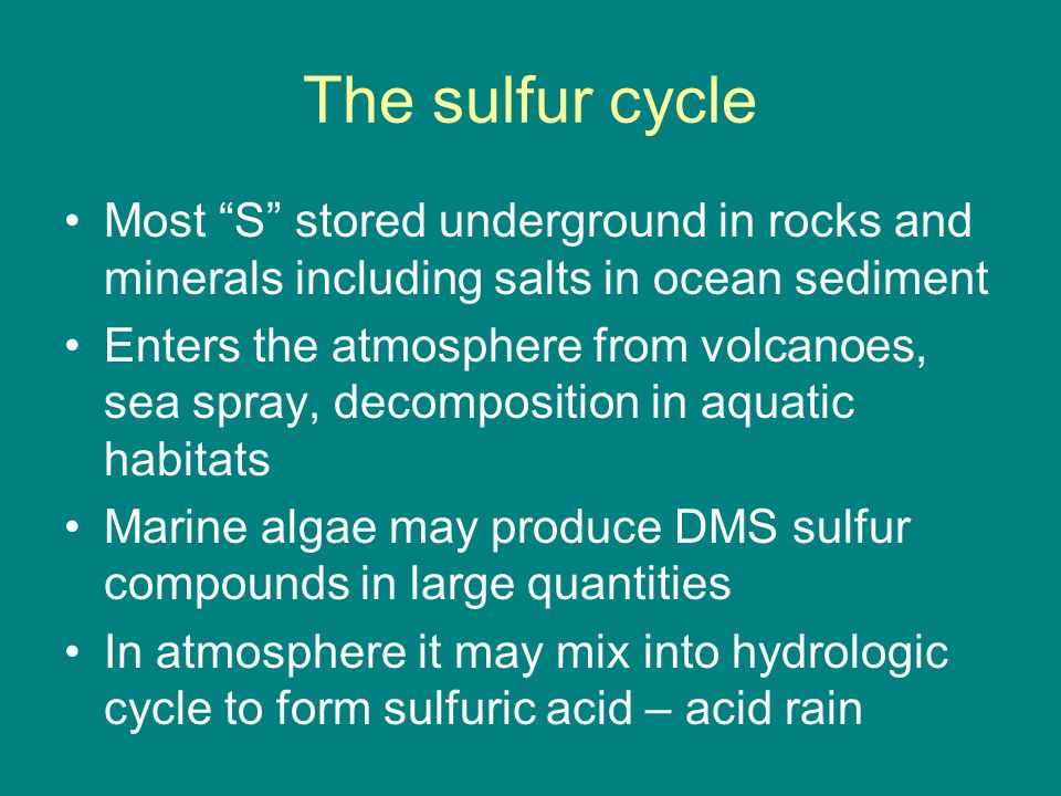The sulfur cycle Most S stored underground in rocks and minerals including salts in ocean sediment.