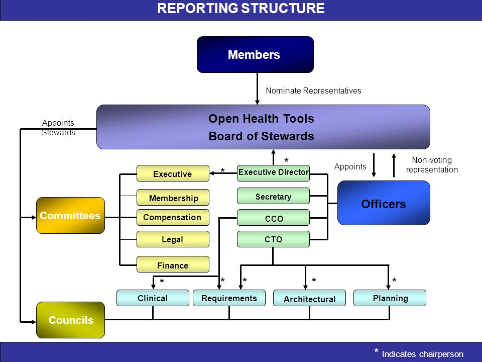 REPORTING STRUCTURE REPORTING STRUCTURE