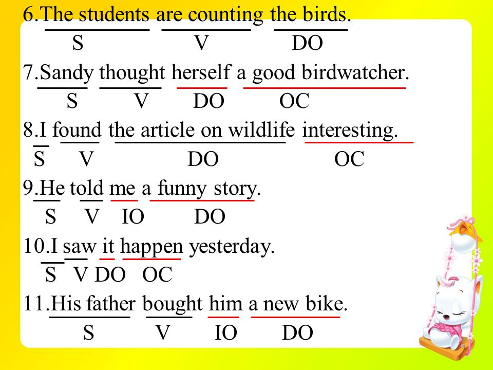 6.The students are counting the birds.