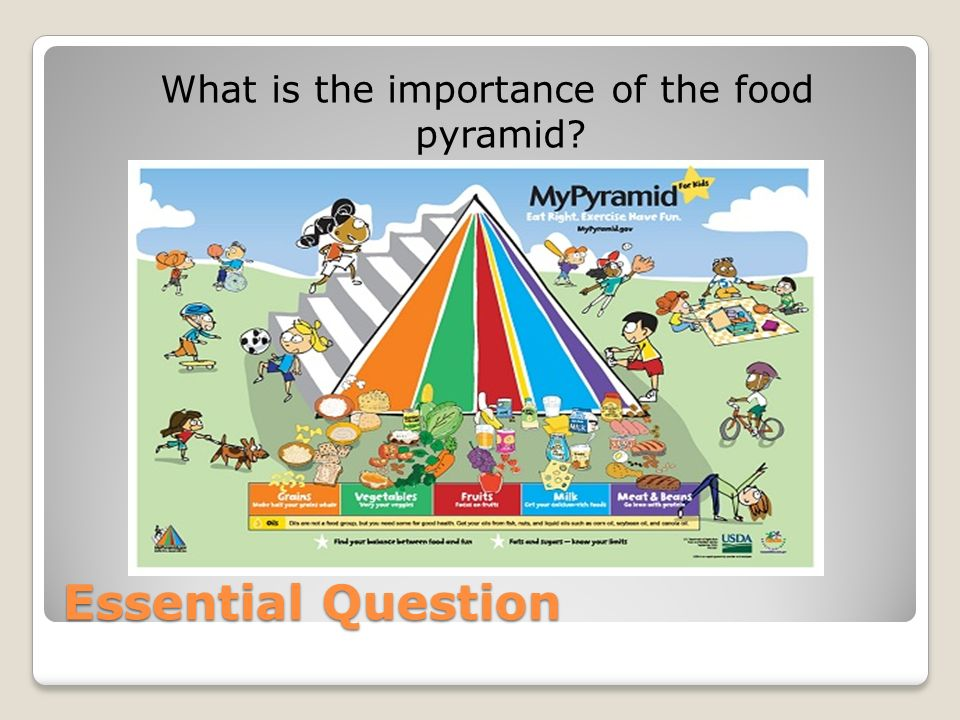 the importance of the food pyramid In 2005 the us department of agriculture (usda) released a food pyramid called mypyramid the figure on the stairs is there to remind you of the importance of.