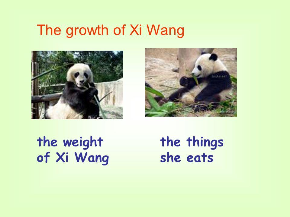 The growth of Xi Wang the weight of Xi Wang the things she eats