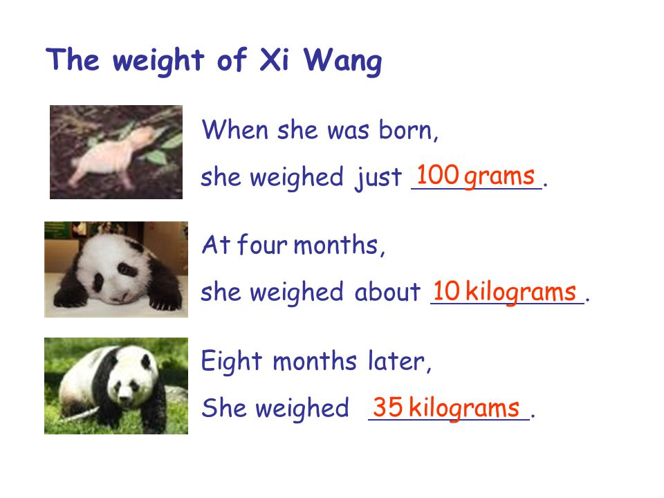The weight of Xi Wang When she was born, she weighed just . 100 grams