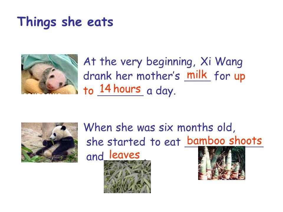 Things she eats At the very beginning, Xi Wang