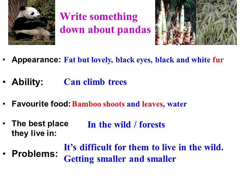Write something down about pandas