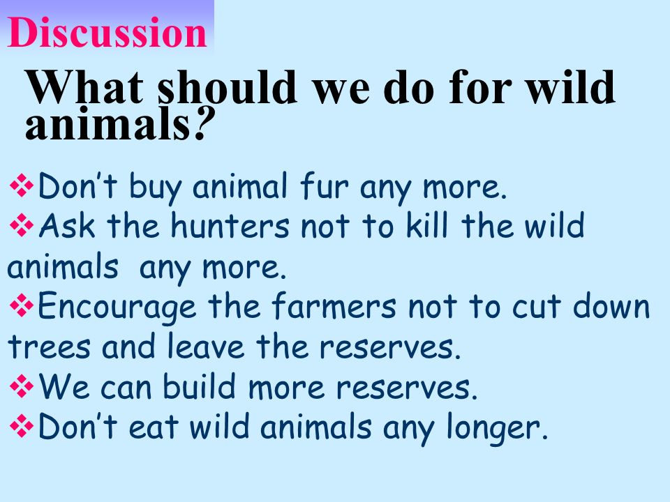 What should we do for wild animals