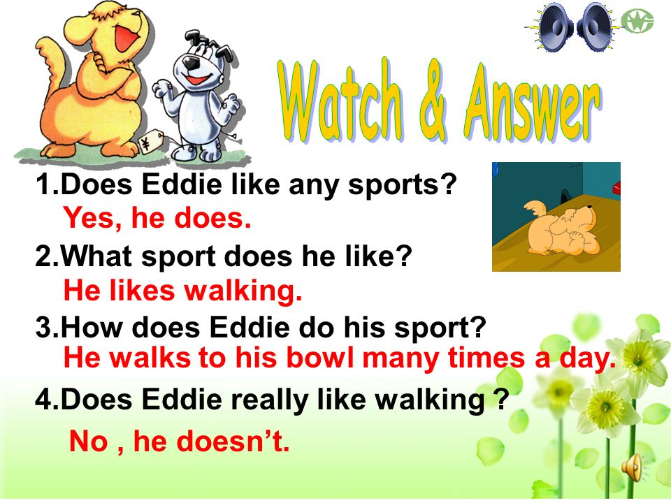 Watch & Answer Does Eddie like any sports What sport does he like