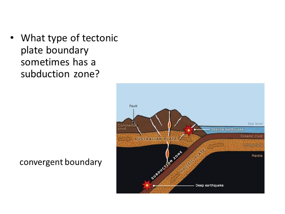 What type of tectonic plate boundary sometimes has a subduction zone