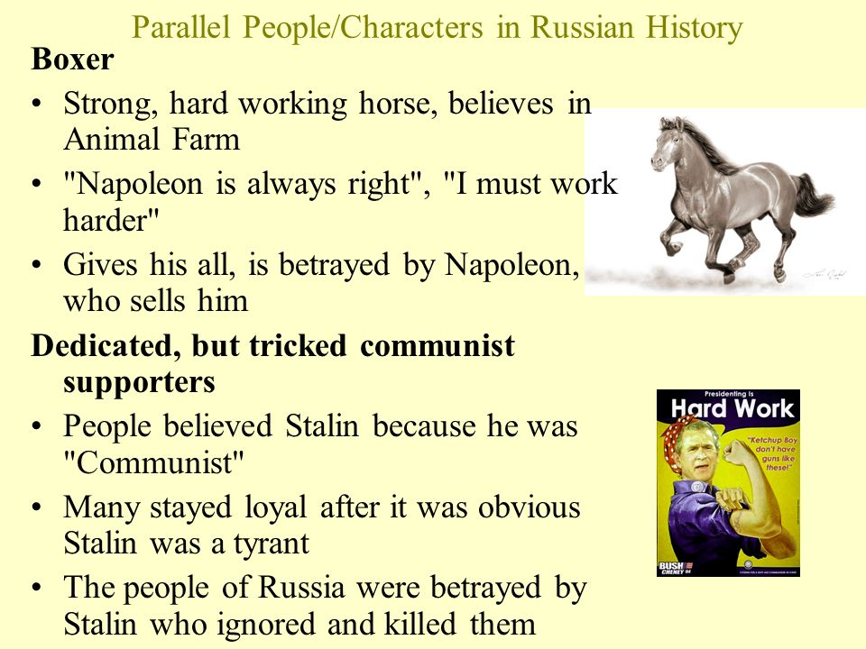 parallelism of stalin and napoleon Joseph stalin, napoleon, napoleon is an example of the tyranny that  orwell  saw this as parallel to the fate of much of the working class under communism.