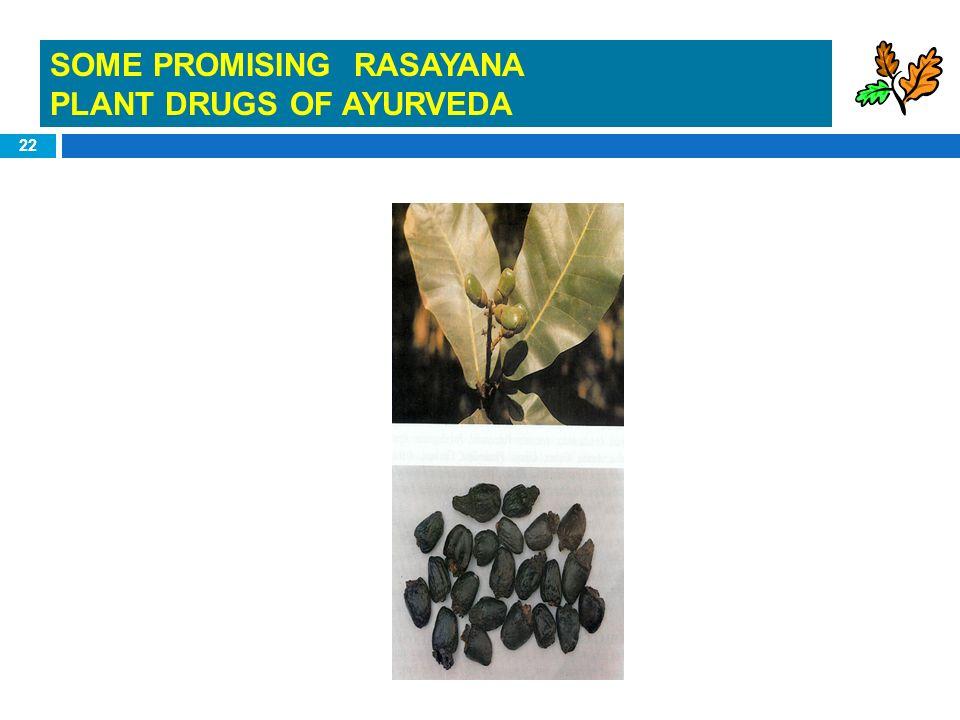 SOME PROMISING RASAYANA
