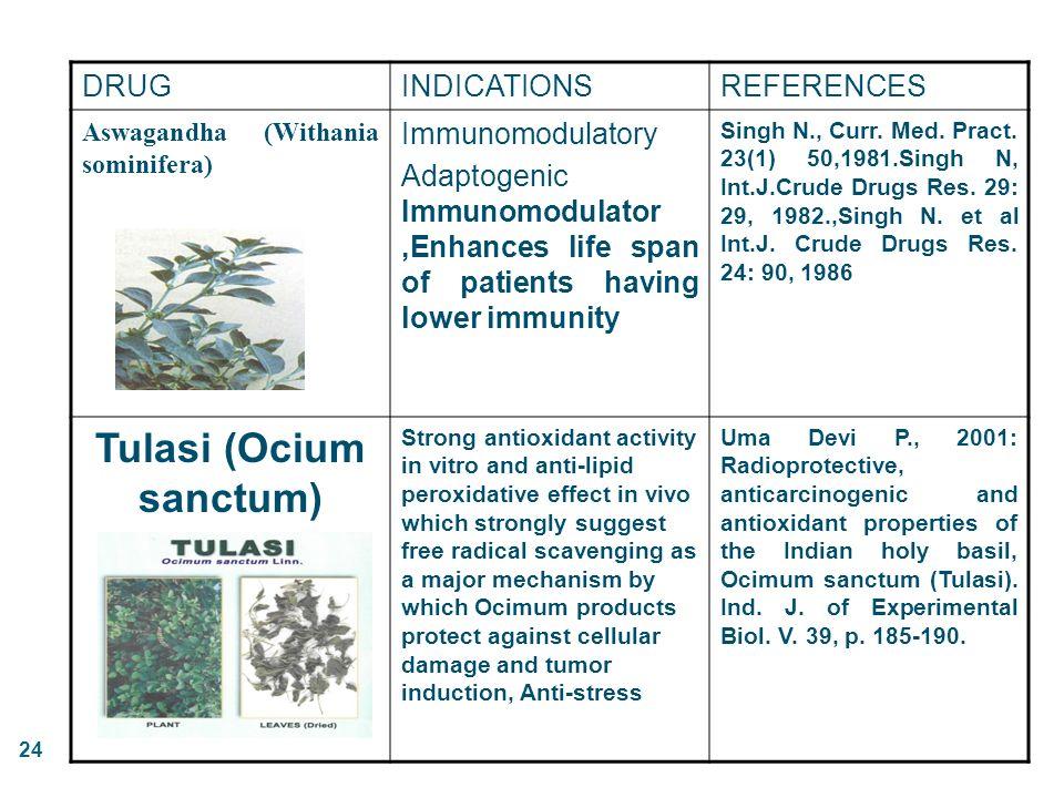 Tulasi (Ocium sanctum)