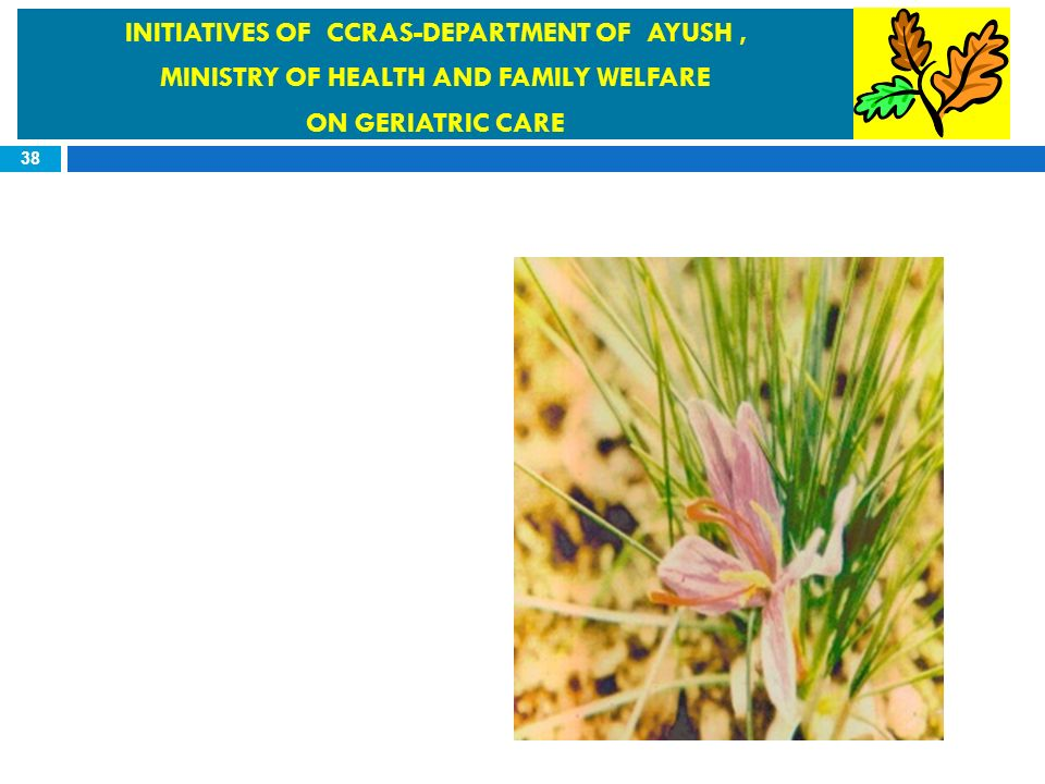 INITIATIVES OF CCRAS-DEPARTMENT OF AYUSH ,