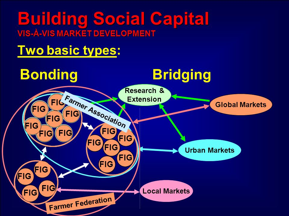 Building Social Capital VIS-À-VIS MARKET DEVELOPMENT