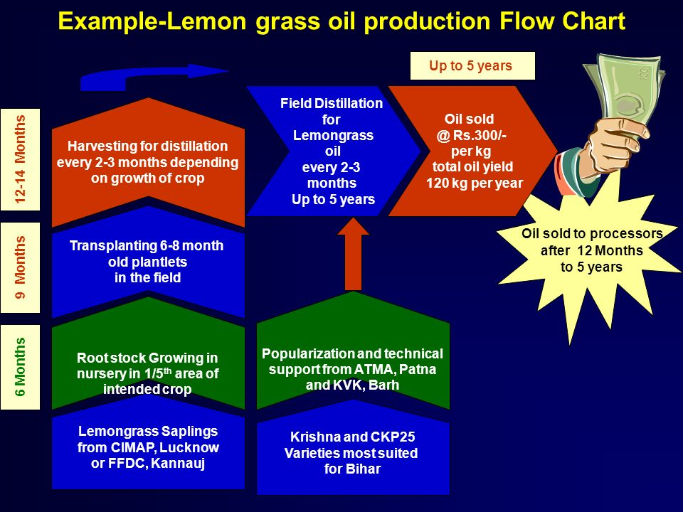 Example-Lemon grass oil production Flow Chart