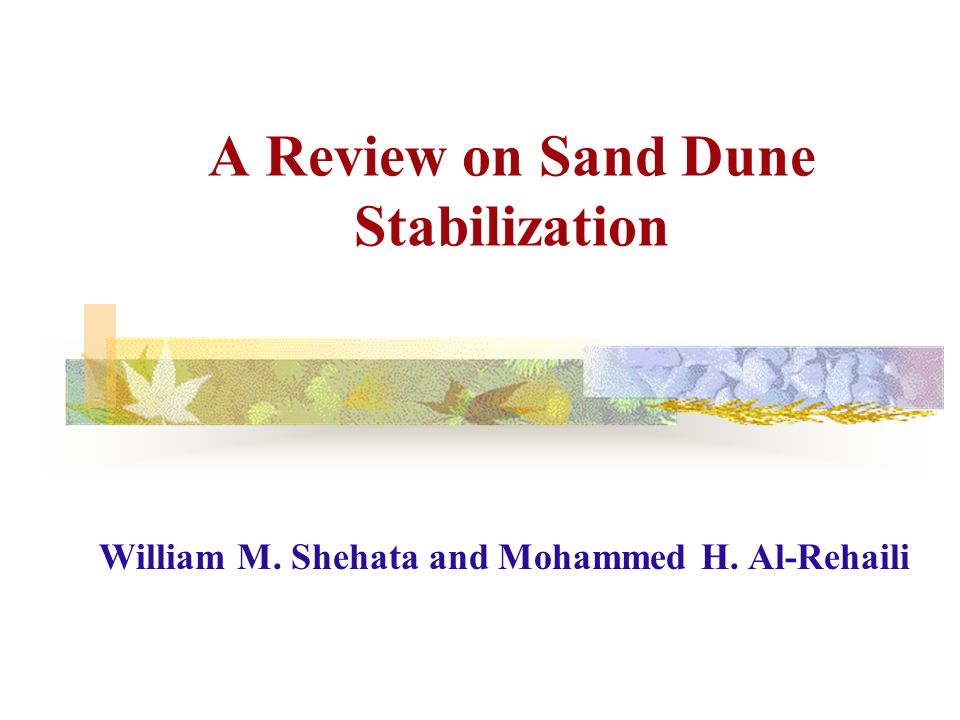 A Review on Sand Dune Stabilization