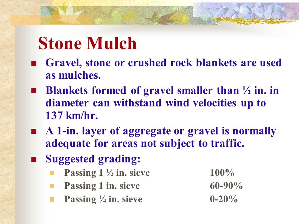 Stone Mulch Gravel, stone or crushed rock blankets are used as mulches.