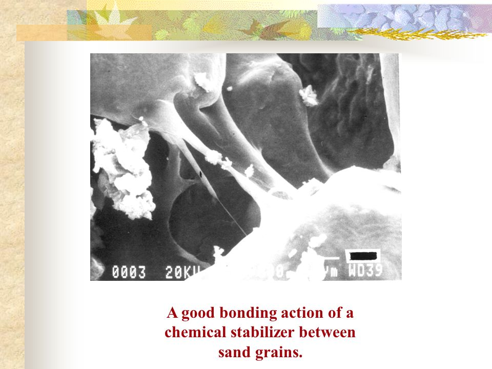 A good bonding action of a chemical stabilizer between sand grains.