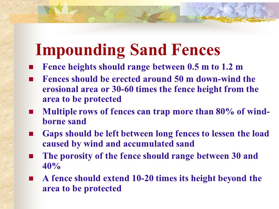 Impounding Sand Fences