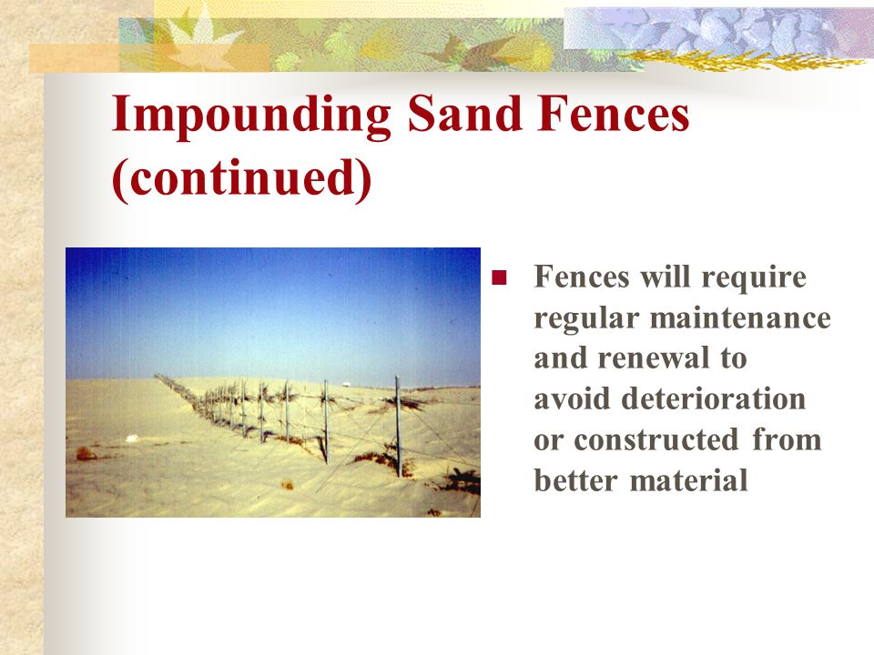 Impounding Sand Fences (continued)