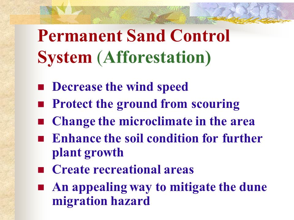 Permanent Sand Control System (Afforestation)