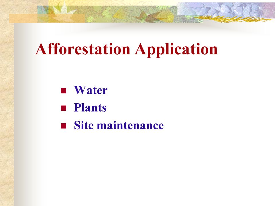 Afforestation Application