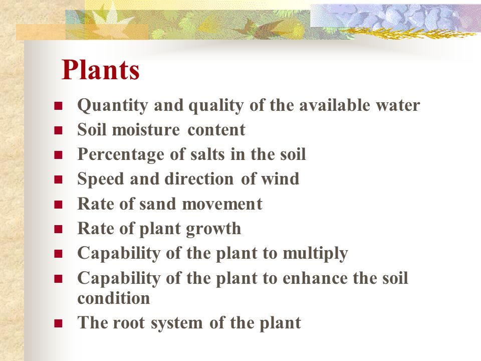 Plants Quantity and quality of the available water