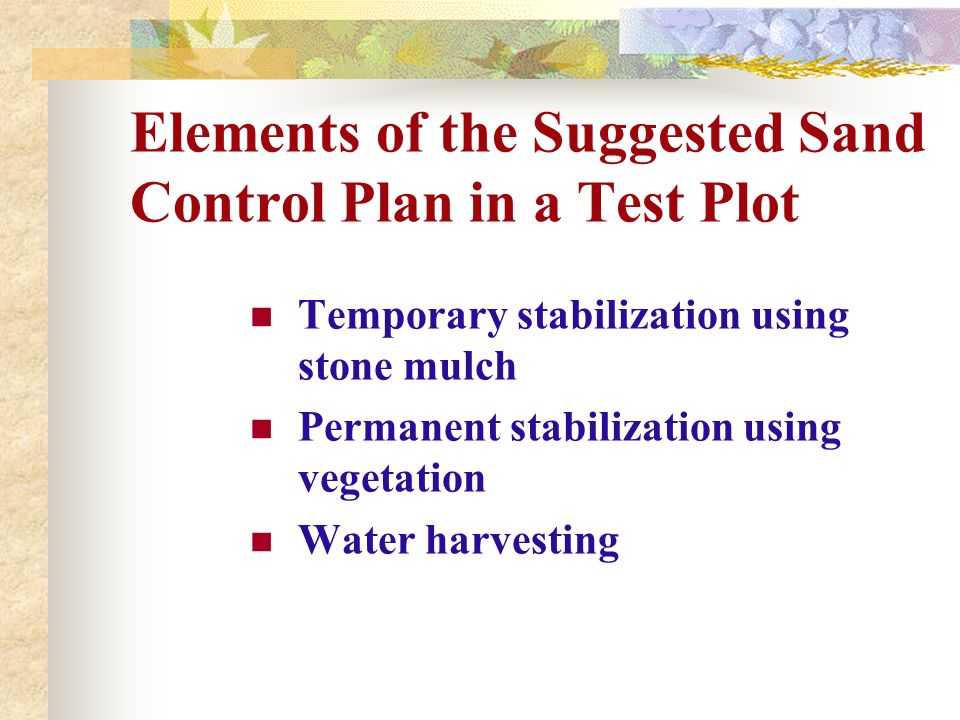 Elements of the Suggested Sand Control Plan in a Test Plot