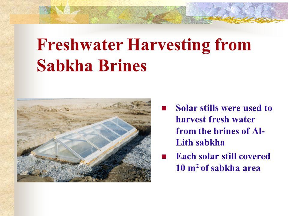 Freshwater Harvesting from Sabkha Brines