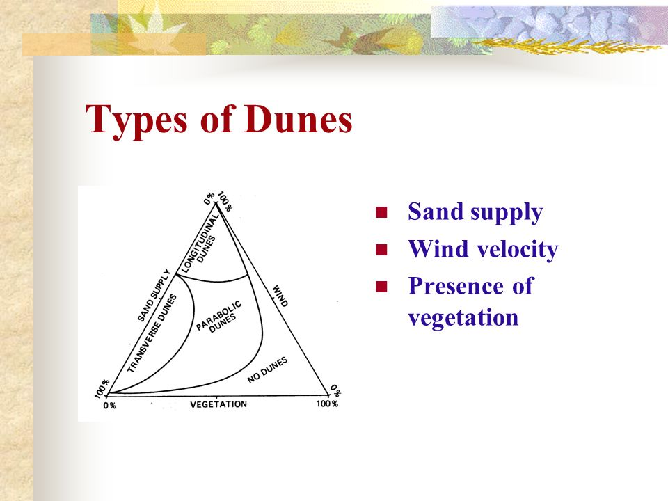Types of Dunes Sand supply Wind velocity Presence of vegetation