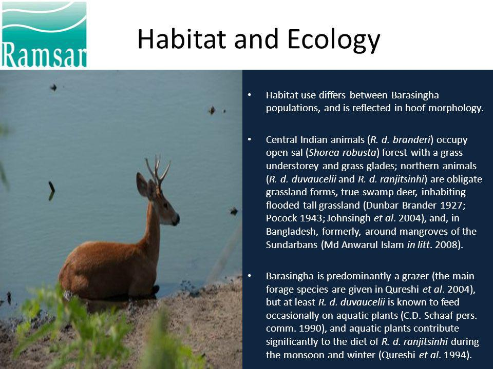 Habitat and Ecology Habitat use differs between Barasingha populations, and is reflected in hoof morphology.