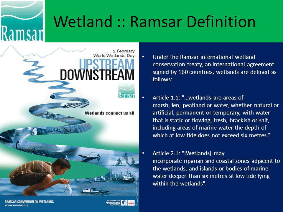 Wetland :: Ramsar Definition