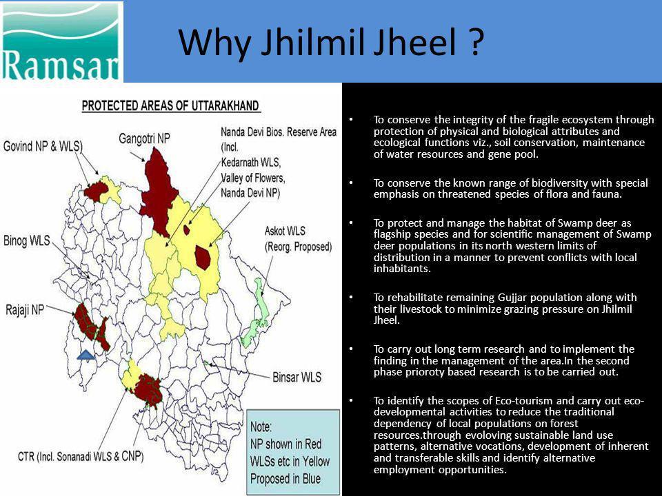 Why Jhilmil Jheel