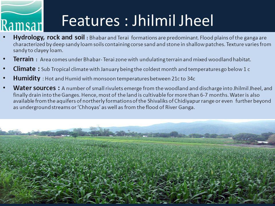 Features : Jhilmil Jheel