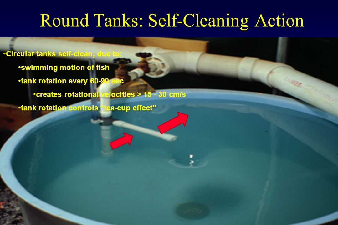Round Tanks: Self-Cleaning Action