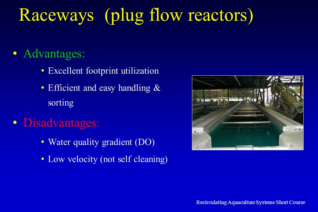 Raceways (plug flow reactors)