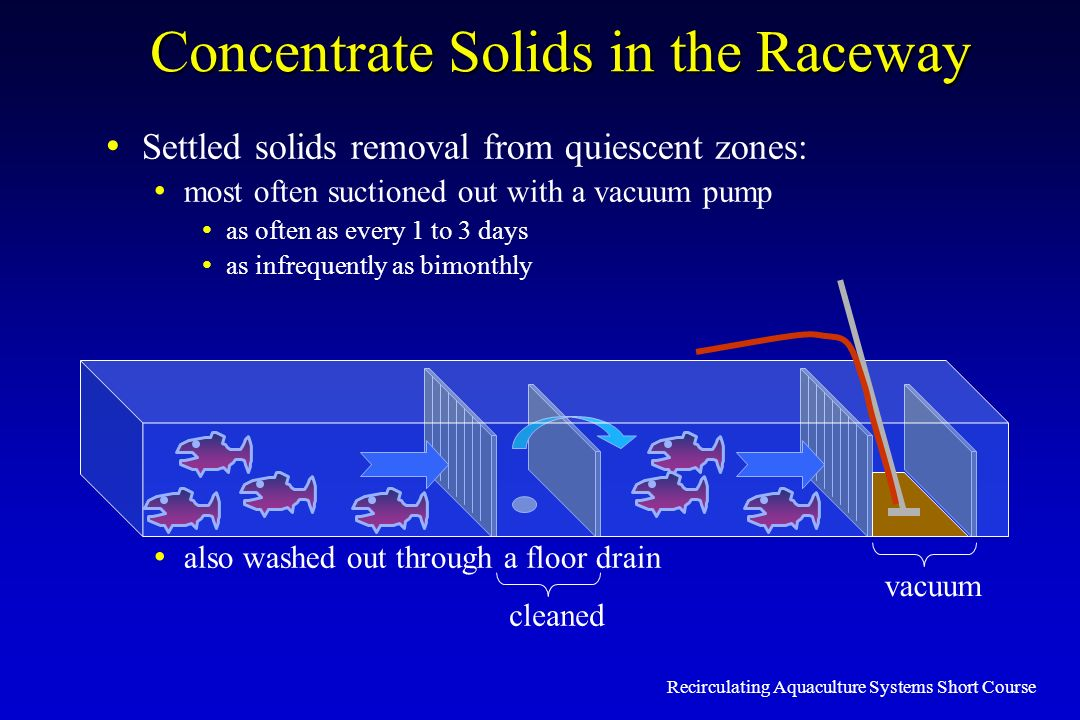 Concentrate Solids in the Raceway